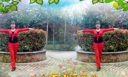 郑州佛岗七彩公园广场舞 心里藏着你 制作:天之蓝昕昕...