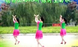 云裳广场舞-情歌