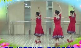 廊坊星月舞蹈队 我想回拉萨 附背面演示及分解教学