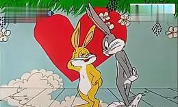 谷》老巫婆变美女兔