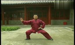 张东武陈式太极拳老架一路教学54_第四十九式:懒扎衣 高清