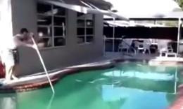 比基尼美女游泳池搞笑失误集锦