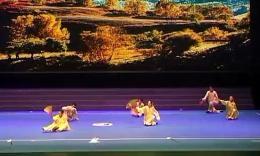 2014年全国武术套路锦标赛太极拳赛 集体项目 (河北) 第五名