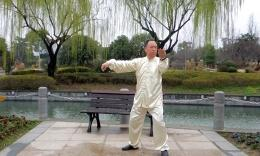 太极学者张建国祝北京太极拳非物申遗成功!