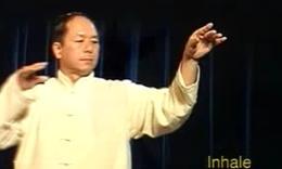 杨俊敏〔台湾〕_杨式太极拳教学