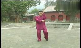 张东武陈式太极拳老架一路教学24第十九式:肘底看拳 高清