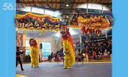 龙飞狮跃( 醴陵市传统武术邀请赛开幕式)