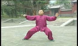 陈式太极拳老架一路29第二十五式:六封四闭、二十六式:单鞭