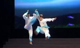 2014年全国武术套路锦标赛太极拳赛 混合双人自选太极拳  第一名