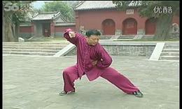 张东武陈式太极拳老架一路教学21第十六式:撇身拳 高清