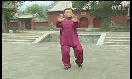张东武陈式太极拳老架一路教学23第十八式:双推手 高清